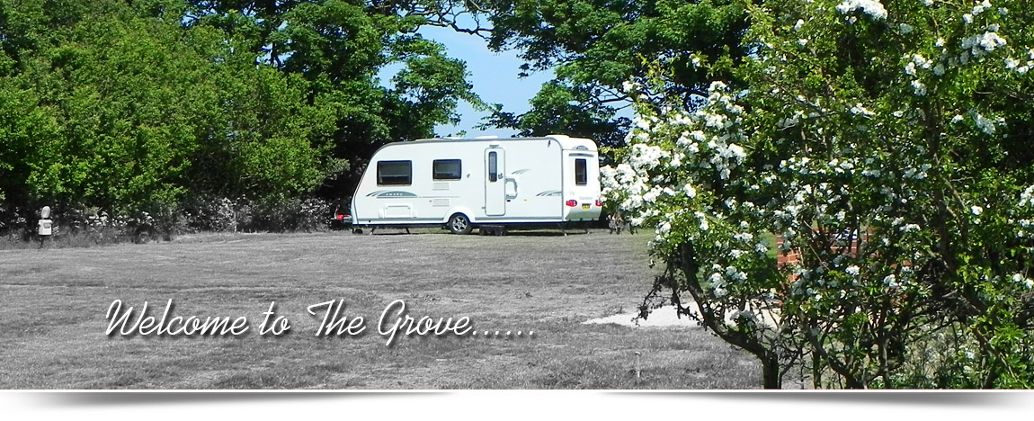 The Grove Caravan Park Anderby Creek Lincolnshire - near Mablethorpe